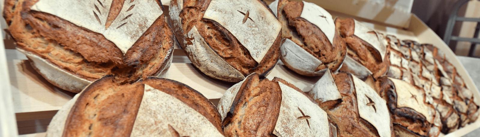 Podcast sur le pain